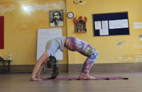 Yoga Teacher Course Nepal